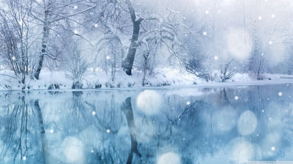 winter-frost-frozen-reflection-landscape-ice-nature-scene-cold-lake-snowfall-forest-snow-wallpaper-download-free